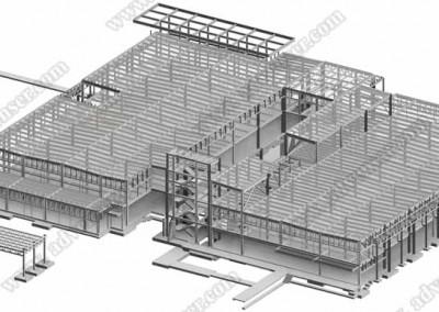 Structural model Revit